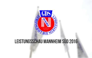 Leistungsschau Mannheim Süd 2016