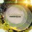 Tingstätte-01-LP-01-1