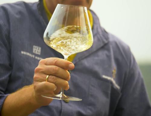 Weingut Heitlinger Imagefilm 2020